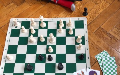 Learning Chess from a Kid's Eye View